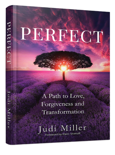 Perfect by Judi Miller